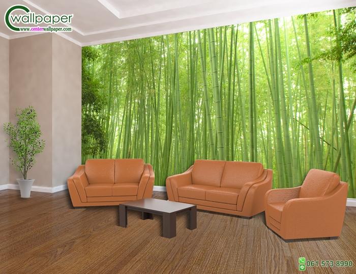 วอลเปเปอร์ติดผนังภาพวิว ป่าไผ่ซากาโนะ (Sagano bamboo forest)