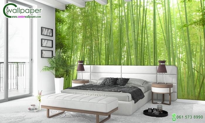 วอลเปเปอร์ติดผนังภาพวิว ป่าไผ่ซากาโนะ