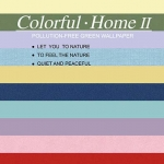 COLORFUL-HOME II