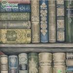 วอลเปเปอร์ติดผนัง ชั้นหนังสือสีน้ำเงินเขียว