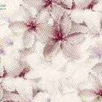 วอลเปเปอร์ดอกไม้สวยๆสีชมพู