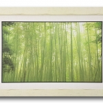 กรอบรูป ภาพป่าไผ่ซากาโนะ