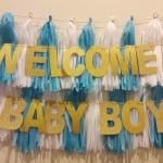 เซ็ทป้ายแขวน WELCOME BABY BOY+ พู่กระดาษ Tassel