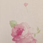 ดอกไม้วินเทจดอกกุหลาบพื้นชมพู