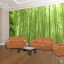 วอลเปเปอร์ติดผนังภาพวิว ป่าไผ่ซากาโนะ (Sagano bamboo forest) thumbnail 1