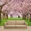 วอลเปเปอร์ติดผนังภาพวิวซากุระ cherry Blossom thumbnail 1