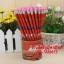 ดินสอ HB ลายการ์ตูน(มีหลายลาย) 230บาท/แพค 72ชิ้น/กล่อง thumbnail 24