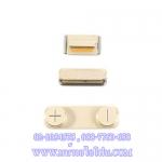 ปุ่มนอก iPhone 5S สีทอง